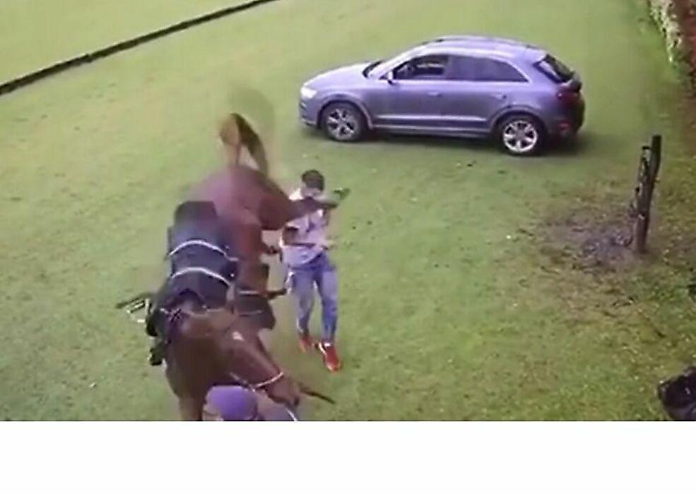 حمله وحشیانه اسب به بازیکن چوگان