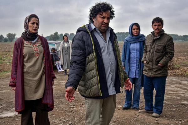 فیلم ناگهان درخت؛ روایت گر یک رابطه عاشقانه