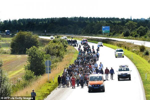 دانمارک ، مهاجران سوری را اخراج کرد