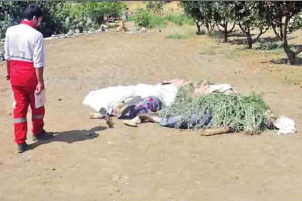جنایت هولناک خانوادگی؛ داماد پنج نفر را کشت و خودکشی کرد